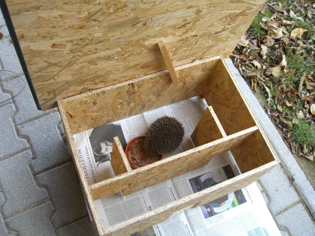 igelhaus selber bauen anleitung - vinpearl-baidai
